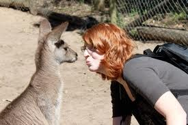 Meet a new friend at Currumbin Wildlife Sanctuary